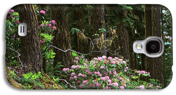 Rhododendrons And Trees, Washington Galaxy S4 Case by Randy Green