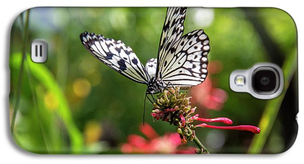 Rice Paper Butterfly (idea Leuconoe Galaxy S4 Case by Chuck Haney