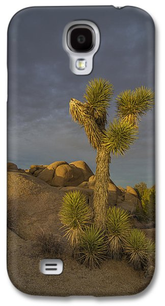 Reaching For The Sky Galaxy S4 Case