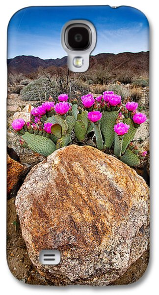 Desert Galaxy S4 Case - Rock And Beavertail by Peter Tellone