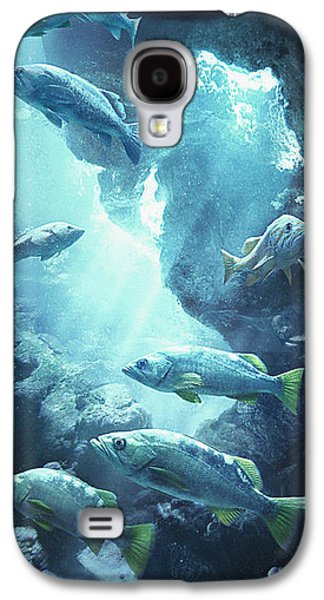 Rockfish Sanctuary Galaxy S4 Case by Javier Lazo