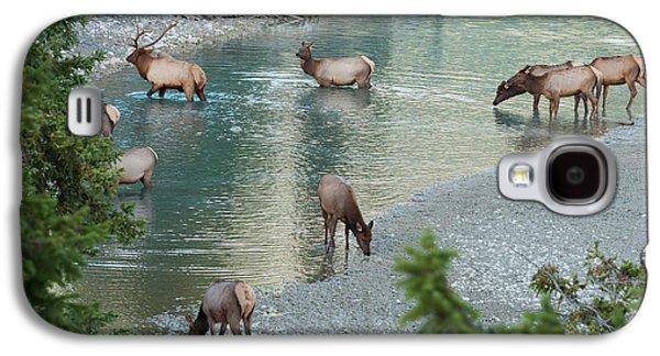 Rocky Mountain Elk Herd Crossing Galaxy S4 Case by Ken Archer