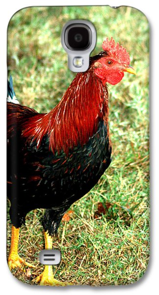 Rooster Red Galaxy S4 Case by Lesa Fine