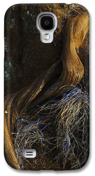 Tree Root Galaxy S4 Case