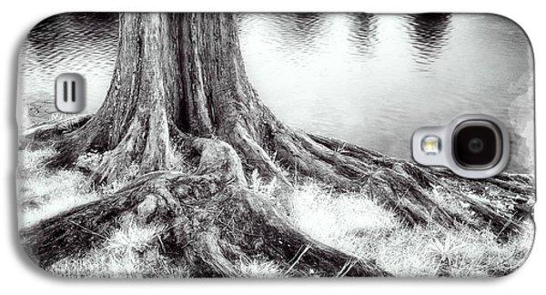 Roots Run Deep - Greensboro Nc II Galaxy S4 Case by Dan Carmichael