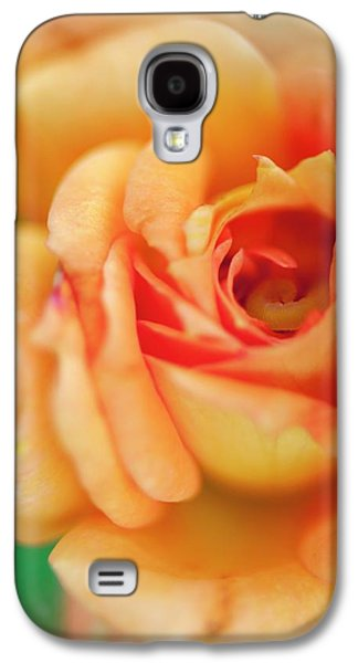 Rosa 'easy Does It' Flower Galaxy S4 Case by Maria Mosolova
