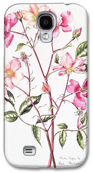 Rosa Mutabilis Galaxy S4 Case by Alison Cooper