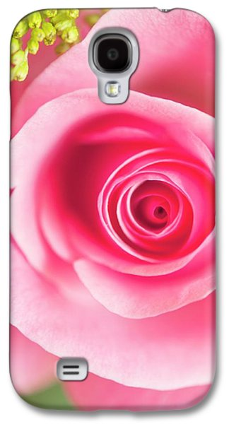 Rosa Sp. Flower Galaxy S4 Case by Maria Mosolova