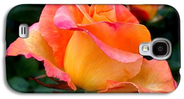Rose Beauty Galaxy S4 Case by Rona Black