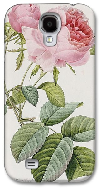 Rose Galaxy S4 Case by Pierre Joesph Redoute