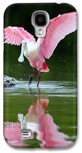 Spoonbill Galaxy S4 Case - Roseate Spoonbill by Clint Buhler