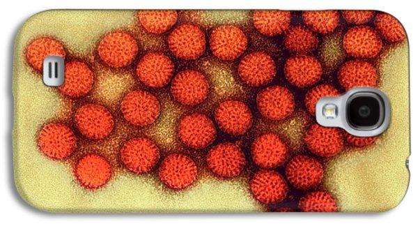 Rotavirus Particles Galaxy S4 Case