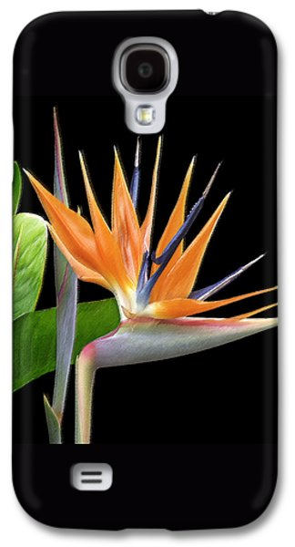 Royal Beauty I - Bird Of Paradise Galaxy S4 Case by Ben and Raisa Gertsberg