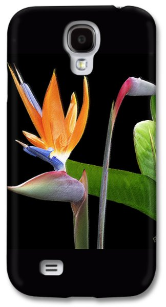 Royal Beauty II - Bird Of Paradise Galaxy S4 Case by Ben and Raisa Gertsberg