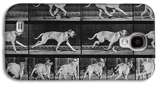 Running Dog Galaxy S4 Case by Eadweard Muybridge