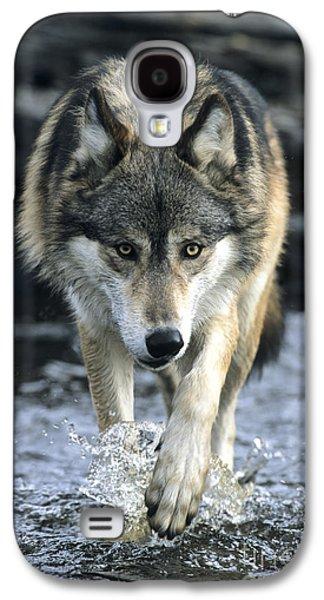 Running Wolf Galaxy S4 Case