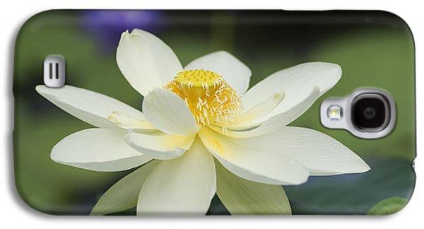 Sacred Lotus  Galaxy S4 Case