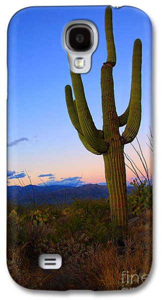 Saguaro Dusk Galaxy S4 Case