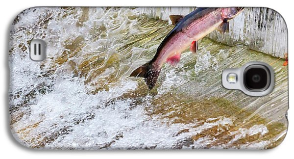 Salmon Jumping Issaquah Hatchery Galaxy S4 Case