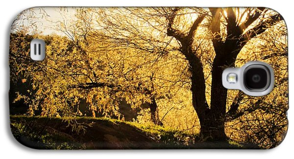 Salt River At Sunset Galaxy S4 Case by Kelly Gibson