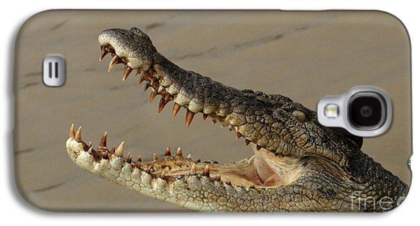 Salt Water Crocodile 1 Galaxy S4 Case by Bob Christopher