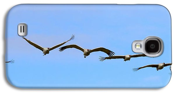Sandhill Crane Flight Pattern Galaxy S4 Case