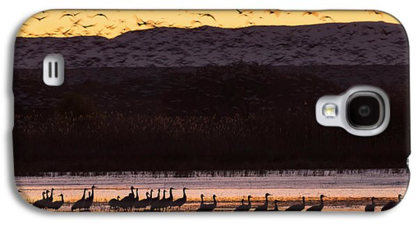 Sandhill Cranes And Other Waterfowl Galaxy S4 Case by Maresa Pryor
