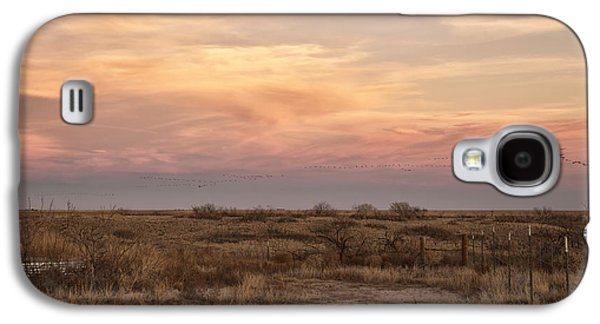 Sandhill Cranes At Sunset Galaxy S4 Case