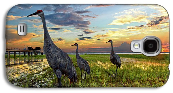 Sandhill Sunset Galaxy S4 Case