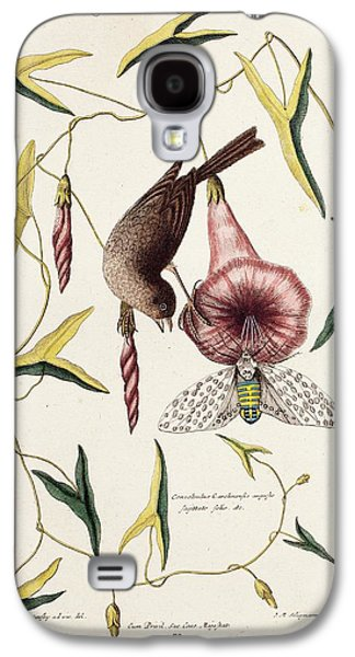 Savannah Sparrow And Cicada Galaxy S4 Case by Paul D Stewart