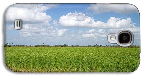Sawgrass In The Florida Everglades Galaxy S4 Case
