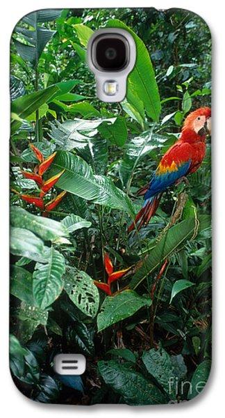 Scarlet Macaw Galaxy S4 Case