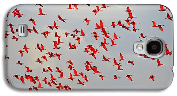 Scarlet Sky Galaxy S4 Case by Tony Beck