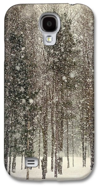 Scenic Snowfall Galaxy S4 Case by Christina Rollo