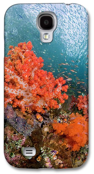Schooling Fish Swim Past Colorful Galaxy S4 Case by Jaynes Gallery