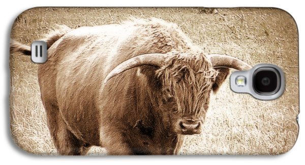 Scottish Highlander Bull Galaxy S4 Case by Karen Shackles