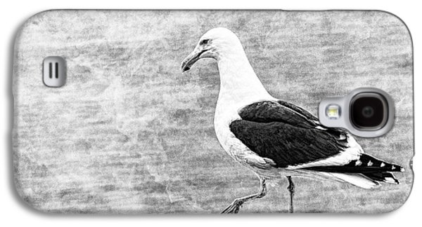 Sea Gull On Wharf Patrol Galaxy S4 Case