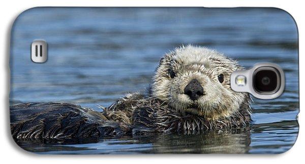 Sea Otter Alaska Galaxy S4 Case
