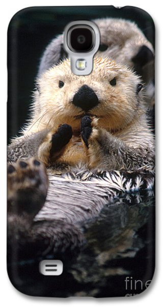 Sea Otter Pup Galaxy S4 Case by Mark Newman