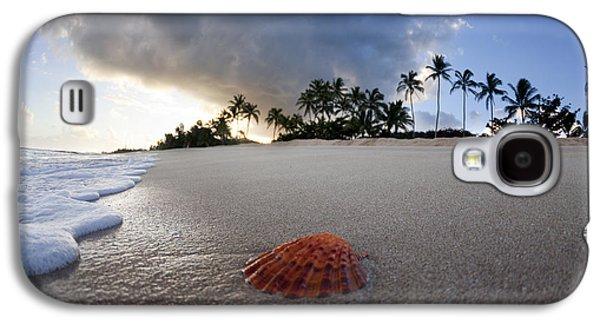 Sea Shell Sunrise Galaxy S4 Case by Sean Davey