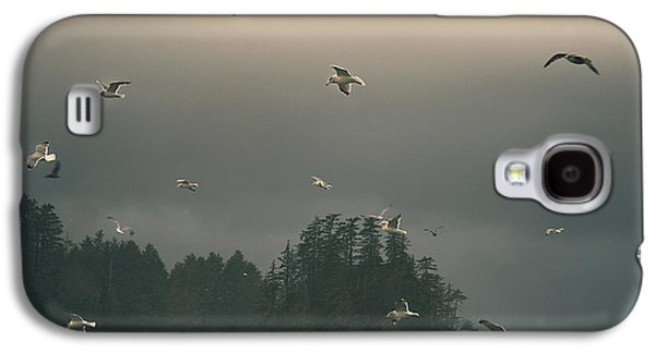 Seagulls In A Storm Galaxy S4 Case