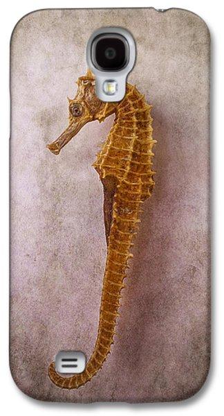 Seahorse Still Life Galaxy S4 Case