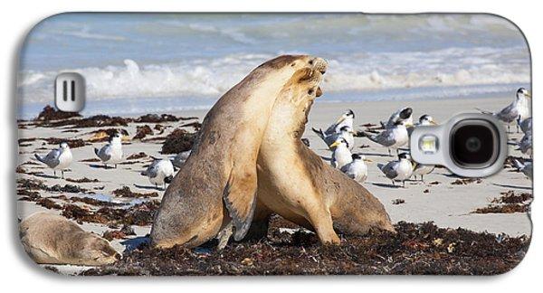 Seal Beach Battle Galaxy S4 Case