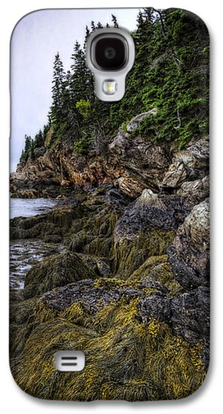 Secret Hideaway Galaxy S4 Case by Joan Carroll