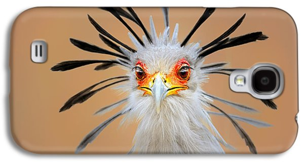 Secretary Bird Portrait Close-up Head Shot Galaxy S4 Case by Johan Swanepoel