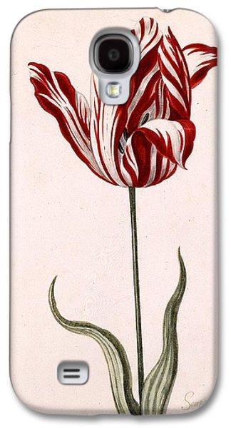 Tulip Galaxy S4 Case - Semper Augustus by Celestial Images