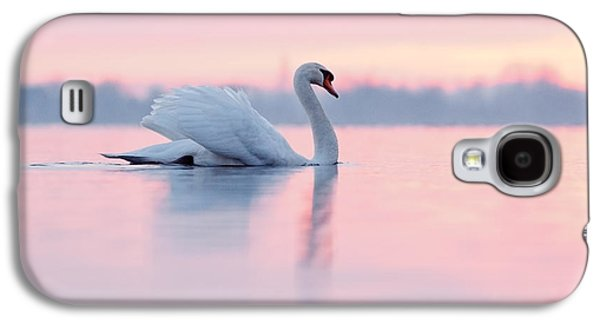 Serenity   Mute Swan At Sunset Galaxy S4 Case by Roeselien Raimond