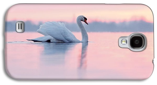 Serenity   Mute Swan At Sunset Galaxy S4 Case