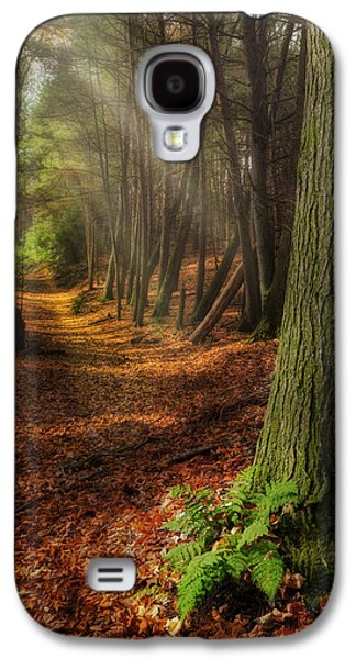 Serenity Of The Forest Galaxy S4 Case