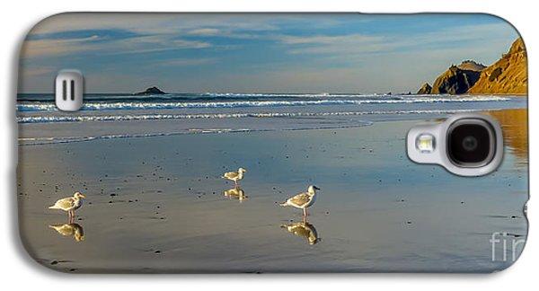 Serinity At The Coast Galaxy S4 Case
